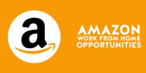 Amazon Work From Home 2020 | Seller Support | B.Sc/ BA / BCA / BBA - Freshers |  Bengaluru