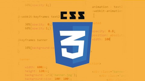 Learn CSS Transition and Animation | Enroll For Free