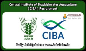 CIBA Recruitment