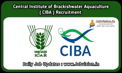 CIBA Chennai Recruitment 2021